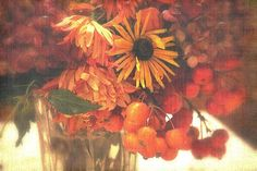 Autumn bunch by mamietherese1, via Flickr |     by michelle last, via Flickr | #earthtones #brown #rust #gold #orange #floral #texture