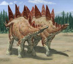 Stegosaurus: Late Jurassic (155–150 Ma): Thyreophora: Discovered by Marsh, 1877