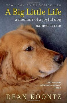 A Big Little Life: A Memoir of a Joyful Dog Named Trixie by Dean Koontz - In a profound, funny, and beautifully rendered portrait of a beloved companion, bestselling novelist Dean Koontz remembers the golden retriever who changed his life Big Little, So Little Time, Dean Koontz, Dog Books, Books About Dogs, Animal Books, Children's Books, Service Dogs, Dog Names