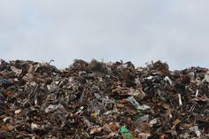 One of many great free stock photos from Pexels. This photo is about texture, trash, waste