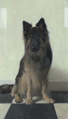 German Shepherd portrait by Dutch realist painter, Pieter Pander, b.1962