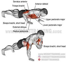 Shoulder tap push-up. A compound exercise. Synergists: Upper Pectoralis Major Anterior Deltoid Triceps Brachii and Serratus Anterior. Dynamic stabilizer: Biceps Brachii (short head only). Important stabilizers: In Ectomorph Workout, Endomorph Diet, Push Up Workout, Triceps Workout, Muscle Fitness, Fitness Goals, Fitness Style, Upper Back Exercises, Compound Exercises