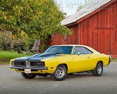 1969 Dodge Charger Yellow And Black Front View On Pavement By Red Barn Dodge Srt, Dodge Challenger, Dodge Muscle Cars, 1969 Dodge Charger, Good Looking Cars, Street Racing, American Muscle Cars, Mopar, Cool Cars
