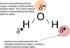 August | 2011 | Learn Biochemistry
