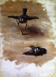 The Athenaeum - Studies of a Dead Bird (John Singer Sargent - )