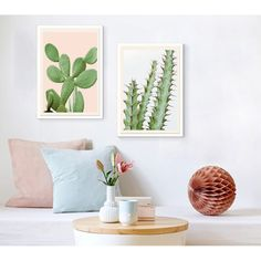 A Prickly Pear against a dusty pink background. These detailed art prints look stunning individually, or group together to form a showcase of botanical calm.