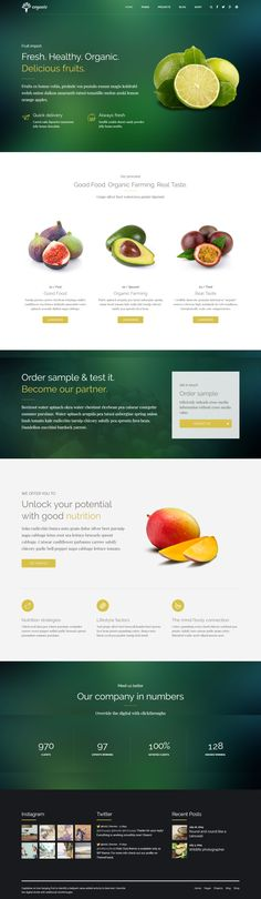 Organic Food - Nutritionist & Food WordPress Theme. #agriculture #cookingschool #delivery #diet #dietitian #eco #ecology #environment #farm #food #healthcoach #nutrition #nutritionist #organic #organicfarm