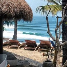 Perfection  @micksplacebali #bali #balilocal #love #travel #jetsetter #micksplace #beautiful #summer #holidays #sun #bikini #pool #chasethesun #wanderlust #happydays #bliss #paradise #cocktails #thisisbali Hotels-live.com via https://instagram.com/