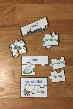 Looking for a fun teaching idea for living and nonliving? Well look no further as Living and Nonliving Things Sort Puzzles will serve as an exciting lesson for elementary school classrooms. This is a great resource for a science center rotation, review game exercise, small group work and for an intervention or remediation. I hope you download and enjoy this engaging hands-on manipulative activity with your students!