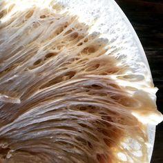 Faljuk a kamukovászost - Kovász Labor Coconut Flakes, Grains, Spices, Food, Beauty, Spice, Eten, Beauty Illustration, Seeds