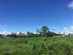 survey lokasi the ortensia village