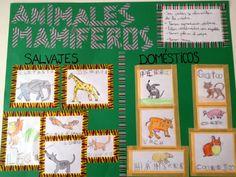 Proyecto escolar de Animales Mamíferos con Washi Tape