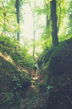 Adventurous Hiking in the Ardennes - Belgium