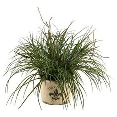 "Bring lush appeal to your sunroom or home office with this faux wild grass arrangement, nestled in a distressed wood planter embossed with a fleur-de-lis motif.  Product: Faux botanical arrangementConstruction Material: Wood and plasticColor: Green and naturalFeatures: Includes faux grassDimensions: 22"" H x 25"" Diameter"