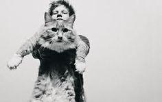 Ed Sheeran (: