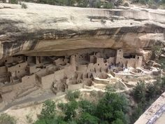 Mesa Verde National Park - Colorado - these pueblo cliff dwellings are carved in the mountain and the dwellers climbed their homemade ladders to the top of the mesa and planted their squash, corn and beans.