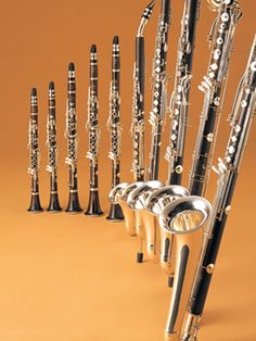 Buffet Clarinets...I have played most of these!  I played bass clarinet, and miss playing 30yrs later