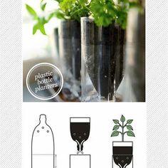 Post novo no blog: Hortas com garrafas PET! Ideais lindas pra você se inspirar, link na bio. [imagem via Maiko Nagao] #ideiasdereuso #inspiracao #garrafapet #horta #supraciclagem #upcycling