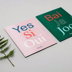 New web full of new projects just around the corner! Stay tuned! #webdesign #print #yes #oui #ja
