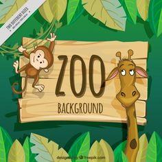 Belle girafe et le singe zoo fond