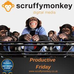 Having a #productive day preparing for #monkeymadness #friday #fridayfeeling #offers #bolton #webdesign #website #web #uk