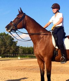 Clinic Time with Volker Brommann by Guest Blogger Madelyn Bricken   Velvet Rider