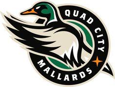 Quad City Mallards  Primary Logo (2015) -