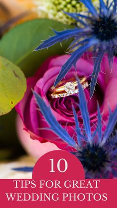 How to plan to make sure you have great wedding photos on your wedding day. Here are my 10 best tips as a Texas wedding photographer. Wedding Planning Tips, Wedding Planner, Wedding Venues, Wedding Photos, Dallas Wedding, Wedding Photo Inspiration, Wedding Moments, On Your Wedding Day, Timeline