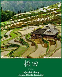 梯田 - tī tián - ruộng bậc thang - terracing