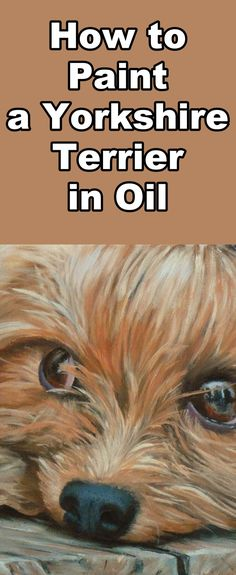 Learn to paint this cute Yorkshire Terrier with this free oil painting tutorial