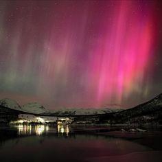 National Geographic Adventure, Aurora Borealis, Amazing Nature, You Really, Northern Lights, Sunrise, Wildlife, Ocean, Earth