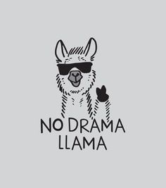 Save the drama for your lama! I love the drama lama Save the drama for your lama! I love the drama lama Alpacas, Me Quotes, Funny Quotes, No Drama Quotes, Good Vibes Quotes, Shirt Quotes, Shirt Sayings, Humor Quotes, Funny Tshirts