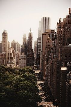 Central Park in Top Destination New York City #nyc #newyorkcity #manhattan #travel #city #nature
