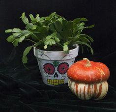 Maceta decorada a mano. Epiphyllum. Mexican Halloween, Planter Pots, Skull, Decorated Flower Pots, Skulls, Sugar Skull