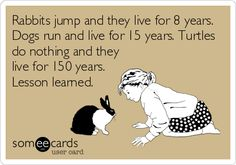 Rabbits jump and they live for 8 years. Dogs run and live for 15 years. Turtles do nothing and they live for 150 years. Lesson learned.