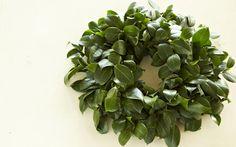 Easy DIY fresh yard clippings wreath --Homemade+Holiday+Wreaths+on+PaulaDeen.com