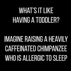 What's it like having a toddler? Imagine raising a heavily caffeinated chimpanzee who is allergic to sleep.