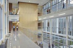 Elgin Community College Health and Life Sciences Building - Interior Lobby and walkways  www.kluberinc.com