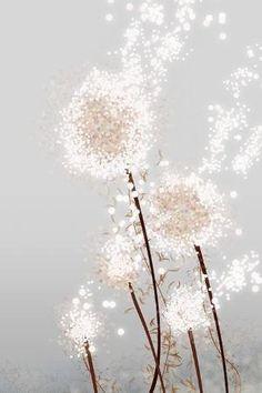 I love dandelion dust...