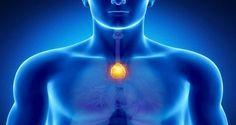 le-point-du-bonheur-dans-votre-corps-neutralisez-lenergie-negative-et-renforcez-votre-systeme-immunitaire