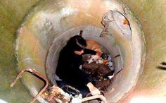 Brave Woman Descends Sewer for Trapped Homeless Dog-  witnesses reported that a dog was down at the bottom of a sewage drain and no one from any of the city departments would come to help. Some passersby would look, others would continue about their business, but no one was about to 'lower' themselves to save a street dog from a filthy hole.