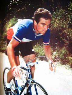 Tricolour jersey of French champion, Bernard Hinault 1978 Tour de France.