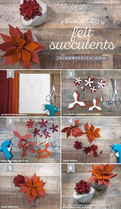 Fall Felt Succulent Decor