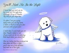 Bichon Frise Angel With Poem Mixed Media by Kim Niles