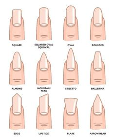 Illustration of Different nail shapes Fingernails fashion Trends vector art clipart and stock vectors. Image The post Illustration of Different nail shapes Fingernails fashion Trends vector art c appeared first on nageldesign. Summer Acrylic Nails, Best Acrylic Nails, Acrylic Nail Designs, Spring Nails, Squoval Acrylic Nails, Round Nail Designs, Matte Nail Art, Elegant Nail Designs, Summer Nails