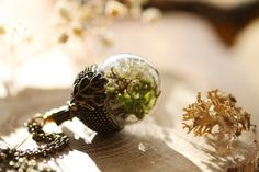 Real moss acorn necklace dried plant necklace by RubyRobinBoutique