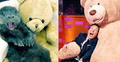 THE GRAHAM NORTON SHOW (November 27, 2015) ~ Benedict Cumberbatch mimics photos of otters. [GIF]