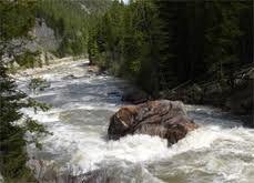 Gallatin River, Montana Fly Fishing and Rafting!