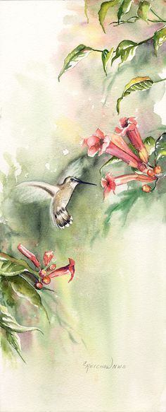 Happy Hunting Ground - Christine Reichow Watercolor Artist (239) 433-3817