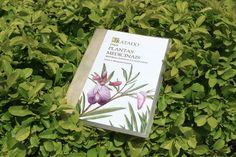 Plantas-Medicinais-Mineiras__site__DVD